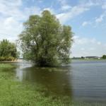 Zicht op de IJssel-filmje