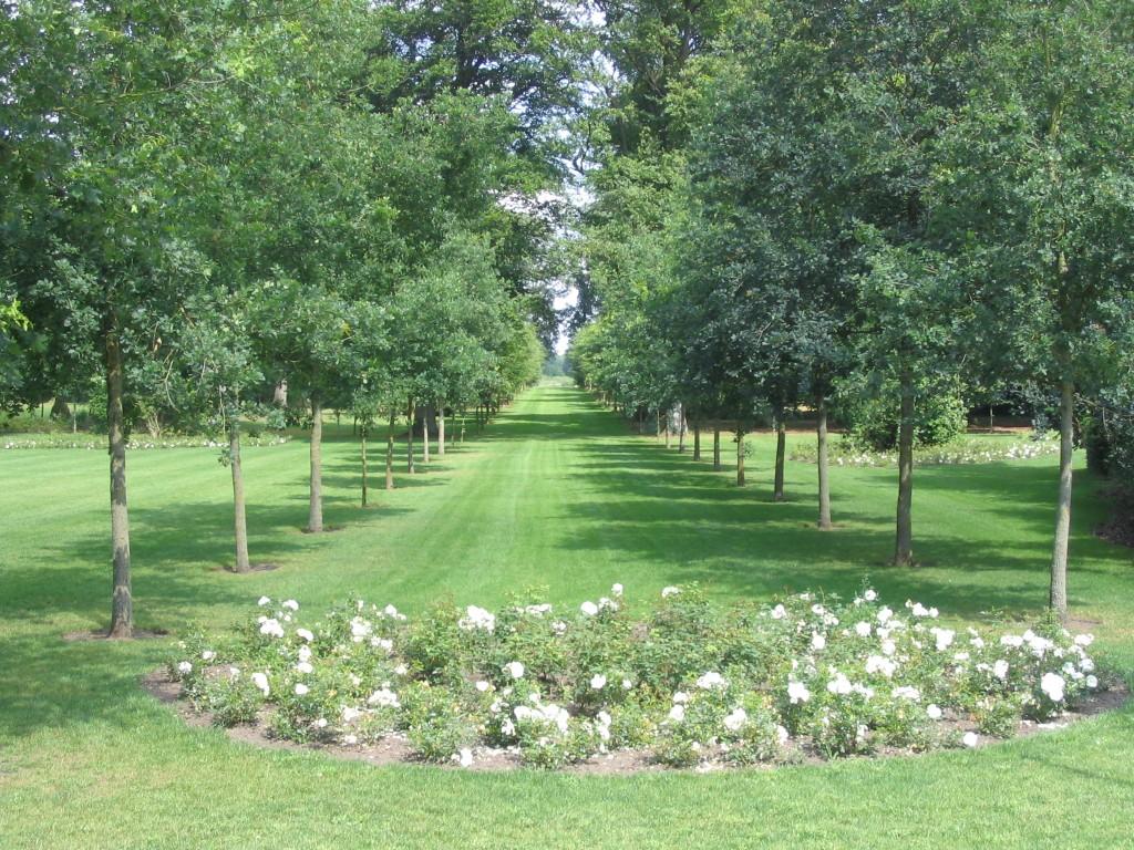 Park de Haere 1