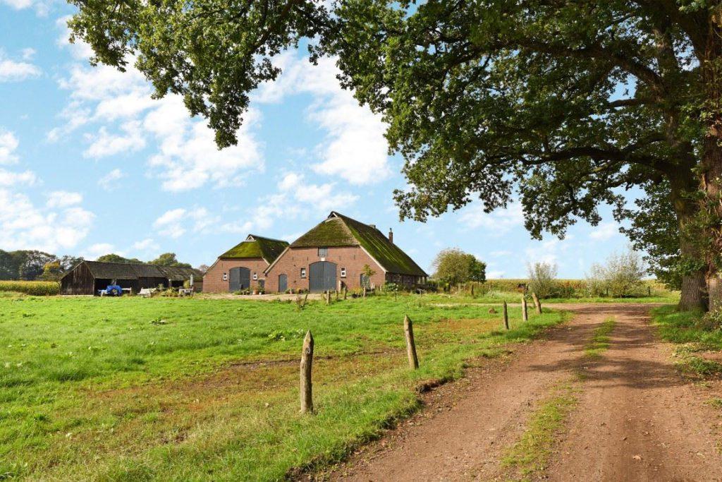 Te koop boerderij geschikt voor 1 3 woningen for Boerderij achterhoek te koop
